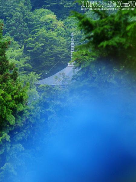 P6240857a_edited1